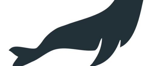 MariaDB definiert mit Platform X4 den Cloud-native-Standard
