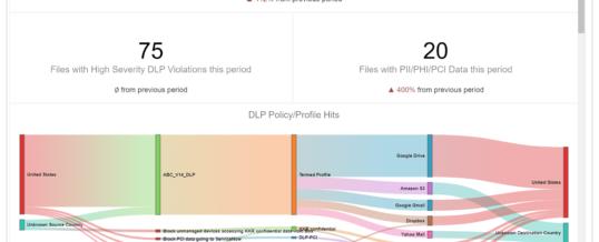 Netskope bietet kontinuierliches Risikomanagement mit neuen Analyse- und dynamischen Visualisierungstools