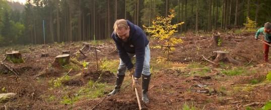 """""""Jeder kann einen Beitrag leisten, ob im Kleinen oder im Großen!"""" Steven Gätjen in """"Operation Wald – So retten wir unseren Planeten"""" am Donnerstag, 18. März 2021, um 22:55 Uhr"""